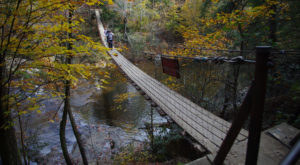 This Swinging Bridge Trail In Tennessee Offers The Perfect Amount Of Adventure