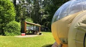 Sleep In A Bubble Under The Stars At This Unique Spot In Washington