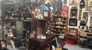 This Oddity Shop Might Just Be The Most Macabre Spot In All Of Michigan