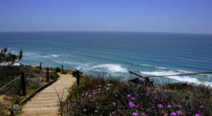 8 Beautiful And Scenic Trails In Southern California That Are Perfect For Beginners