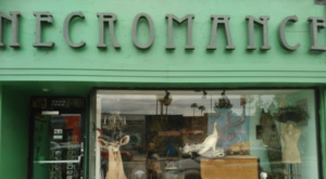 This Oddity Shop Might Just Be The Most Macabre Spot In All Of Southern California