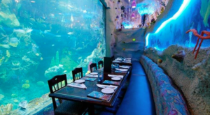This One Of A Kind Restaurant In Colorado Is Fun For The Whole Family