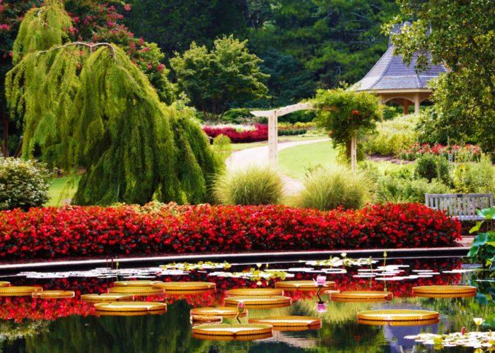 kew botanical gardens parking
