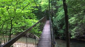 5 Swinging Bridge Trails In Kentucky That Offer The Perfect Amount Of Adventure