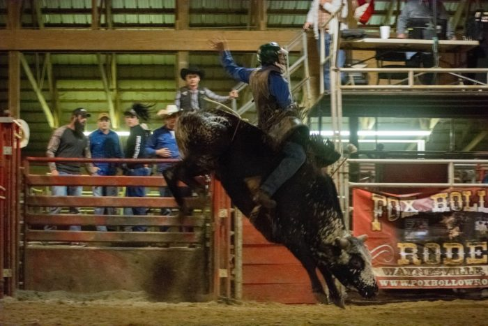 Fox Hollow Rodeo Is A Fun Filled And Surprising Attraction