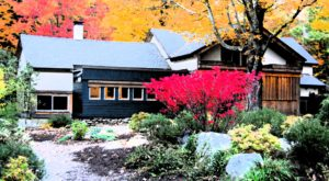 This Japanese Bed & Breakfast Is Just The Place To Escape A Connecticut Winter