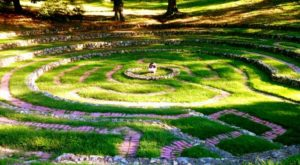 This Magical Hike Through The Woods In Georgia Will Lead You To Your Very Own Labyrinth