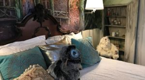 The Harry Potter Themed Airbnb In Massachusetts Is A Dream Getaway For Potterheads Of All Ages