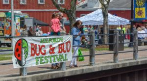 Delaware's Adorable Ladybug Festival Is The Best Way To Welcome Spring