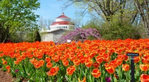 The 12 Places You Absolutely Must Visit In Ohio This Spring