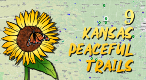 9 Peaceful Trails In Kansas That Will Completely Relax You