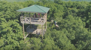 The Most Breathtaking Zip Line Tour In The Midwest Is Right Here In Minnesota And You Have To Try It