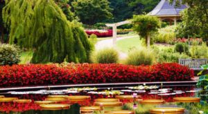 Your Visit To This Beautiful Garden In The U.S. Will Be Simply Unforgettable