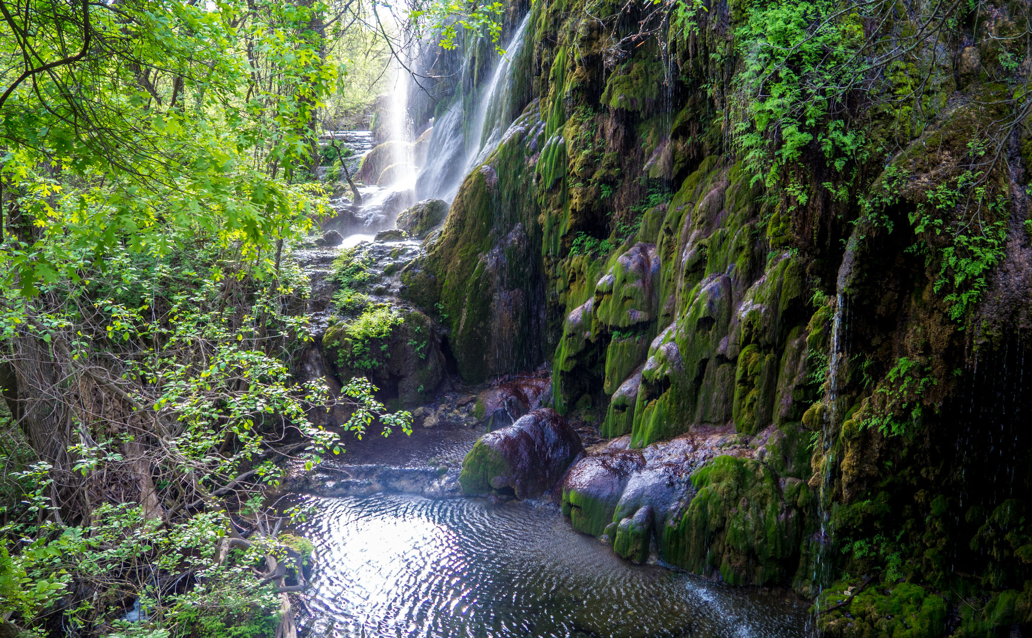 Gorman Falls Trail Is Austin's Best Hike With An Awesome ...