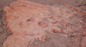 These Mammoth Footprints In Arizona Will Take You Back To Prehistoric Times