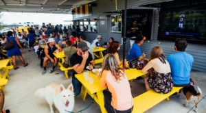There's A Dog Park Restaurant In Texas And It's Just As Awesome As It Sounds