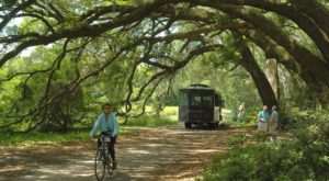 The 10 Places You Absolutely Must Visit In South Carolina This Spring