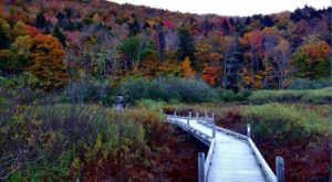 8 Totally Kid-Friendly Hikes In Vermont That Are 1 Mile And Under