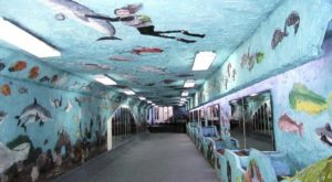 Most People Don't Know About This Hidden Underground Tunnel In South Carolina
