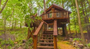 Sleep Underneath The Forest Canopy At This Epic Treehouse Near Pittsburgh