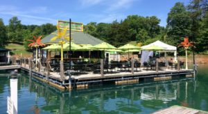 Visit The Best Beach Bar In Tennessee Where It Always Feels Like You're On Summer Vacation