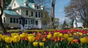 The 12 Places You Absolutely Must Visit In Connecticut This Spring