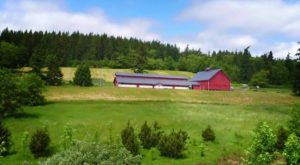 This Historic Farm In Washington Makes A Perfect Day Trip Destination For The Whole Family