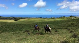 You'll Be Transported To The Wild, Wild West On This Epic Hawaii Tour