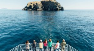 The Little Known Boat Tour In Alaska That Will Enchant You Beyond Words