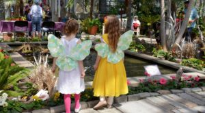 This Fairy Garden Festival In Rhode Island Is The Most Enchanting Place To Visit This Spring