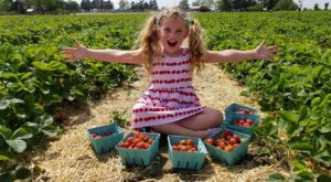 Take The Whole Family On A Day Trip To This Pick-Your-Own Strawberry Farm In New Jersey