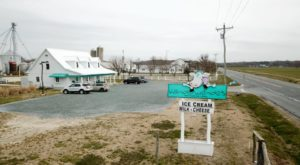 This Little Delaware Family Creamery Is A Sweet Country Dream