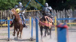 Take A Day Trip To This Magical Medieval Forest Fair Near Austin