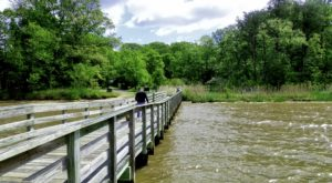 Explore This Hidden Gem Park With Some Of The Best Boardwalk Trails In Maryland