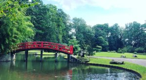 This Beautiful 96-Acre Botanical Garden In Tennessee Is A Sight To Be Seen