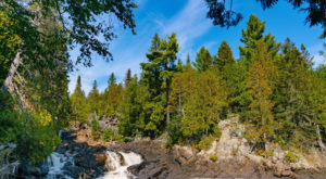 This Scenic State Park In Minnesota Is Home To Trees Older Than The State Itself