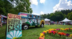This One-Day Hippie Festival In Michigan Is An Absolute Blast