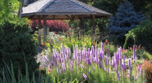 These 9 Gorgeous Gardens In Washington Will Put You In A Spring State Of Mind