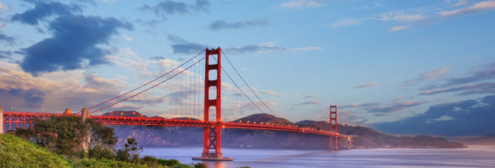 San Francisco Newsletter