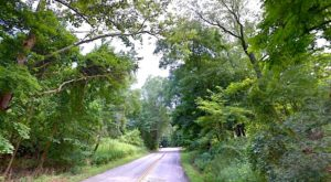 The 20-Mile Scenic Drive Near Cleveland You Will Want To Take As Soon As You Can