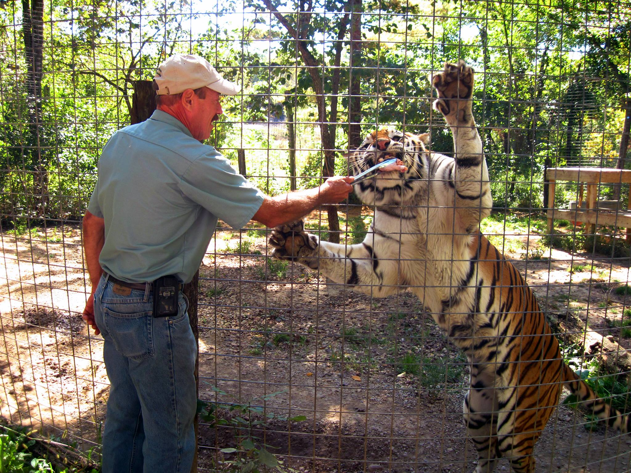 6 Best Animal Experiences In Indiana You Must See To Believe