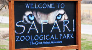 This Zoo In Kansas Has Animals That You May Have Never Seen In Person Before