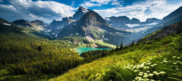 Montana Newsletter