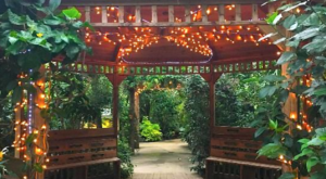 The Butterfly Forest In Massachusetts That's The Perfect Family Destination