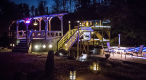 This Glow-In-The-Dark Treehouse Might Be The Most Unique Accommodation In Virginia