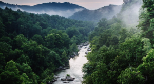 The Heavenly Valley In Virginia That's Home To Over 600 Miles Of Hiking Trails