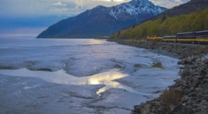 This 3-Hour Scenic Train Ride Showcases Everything We Love About Springtime In Alaska