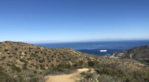 The Stunning Hike In Southern California That Has Sweeping Views Of The Ocean