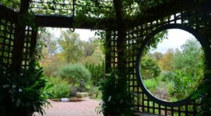 The Whimsical Ohio Garden That Looks Like Something Through The Looking-Glass