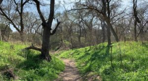 These 5 Austin Hiking Trails Lead To Some Incredible Pieces Of History